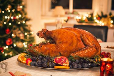 an image of a turkey for christmas